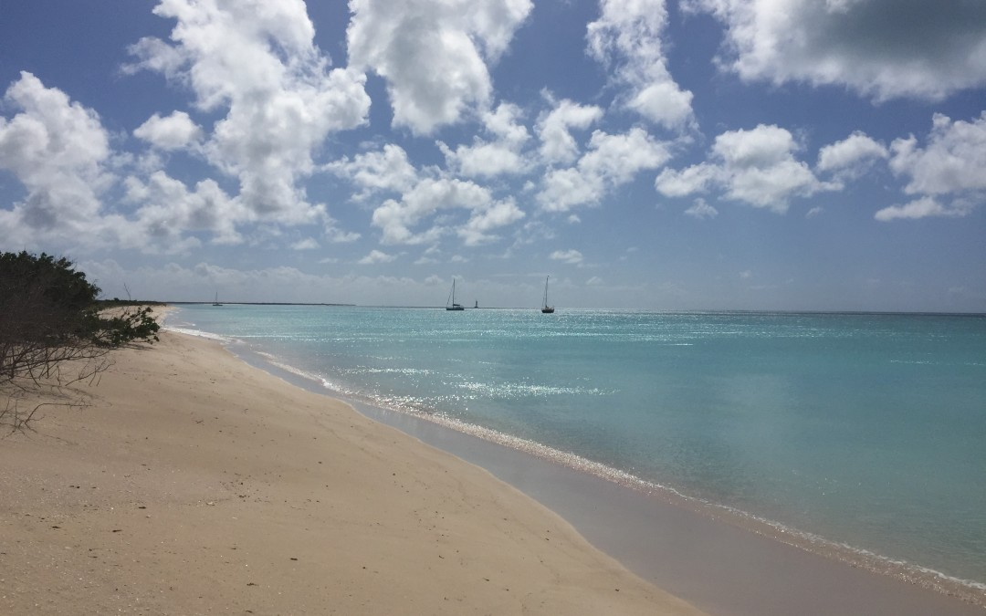 BEAUTIFUL BARBUDA
